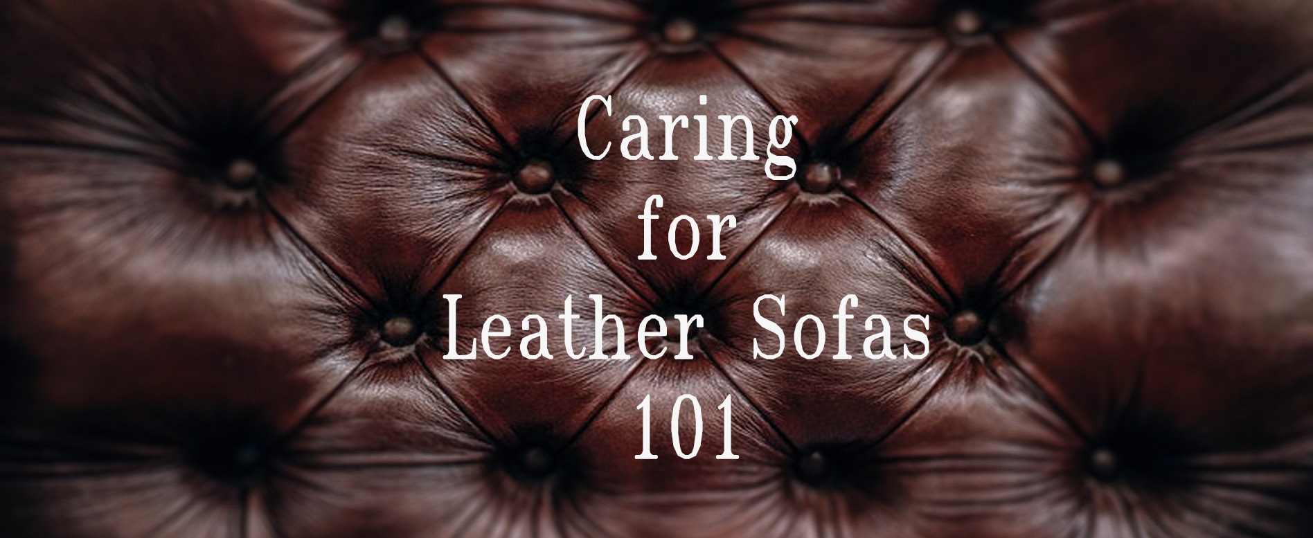 How to Clean and Maintain Leather Sofa